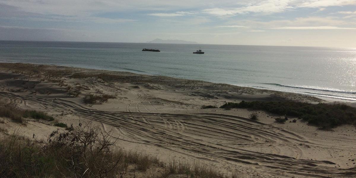 Pakiri Beach New Zealand sand dunes