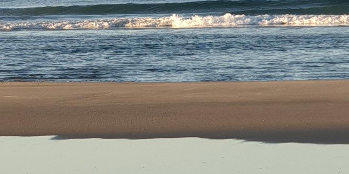 Pakiri-Beach-New-Zealand-Sand-Mining-Pakiri-Beach-friends-of-Pakiri-Beach-17