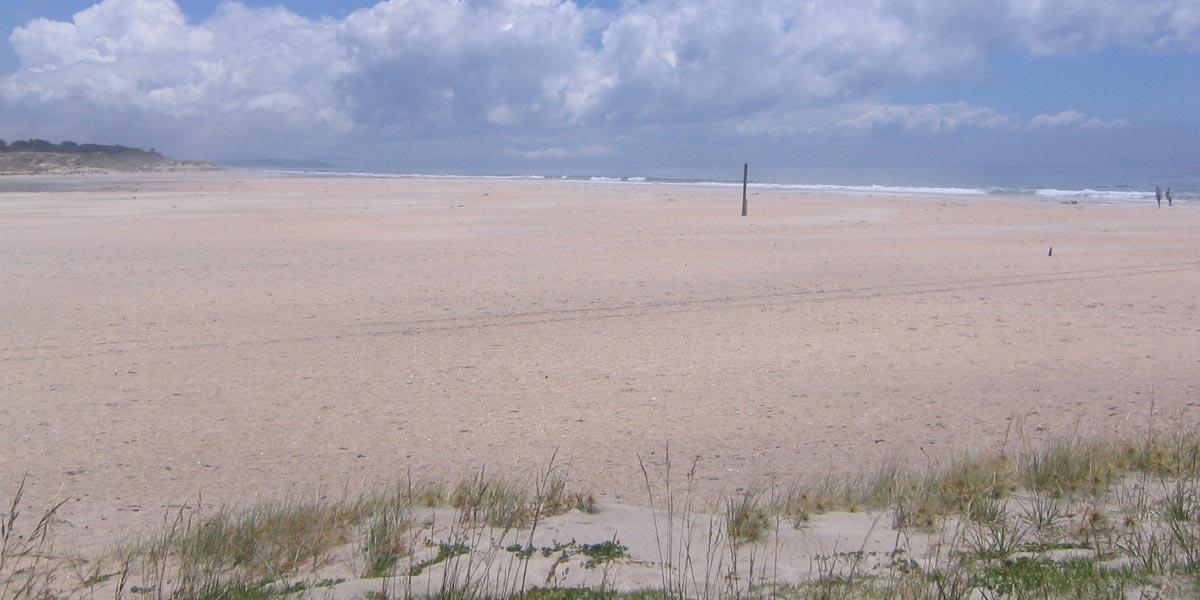 Pakiri-Beach-New-Zealand-Sand-Mining-Pakiri-Beach-friends-of-Pakiri-Beach-20