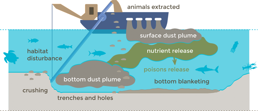 Diagram of the environmental consequences of sand mining on Pakiri Beach